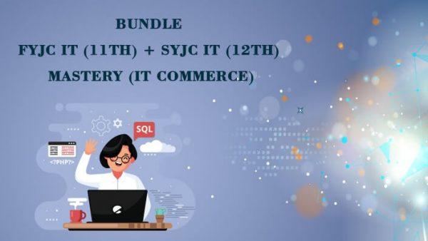 11th 12th it bundle course commerce